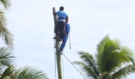 ENAWO Sambava Jirama Réparation de réseaux électriques Marnolat Rajaonina